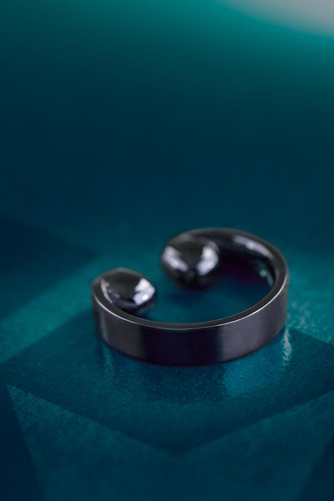 Maison ZAZ 2013 - Tie-Rings